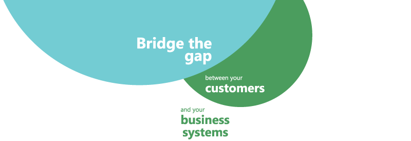 Bridge the Gap between your customers and your business systems